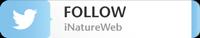 Follow @iNatureWeb