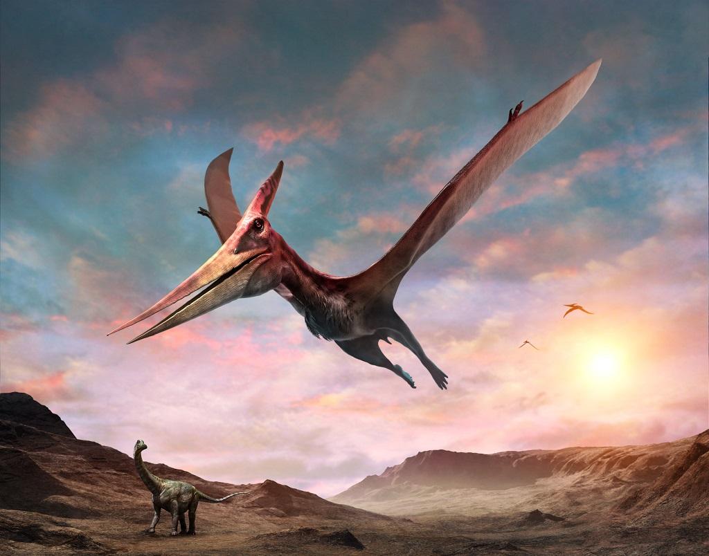Non-Dinosaurian
